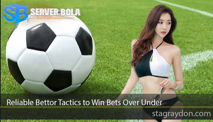 Reliable Bettor Tactics to Win Bets Over Under
